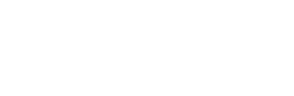 Insitute for Citizen-Centered Service